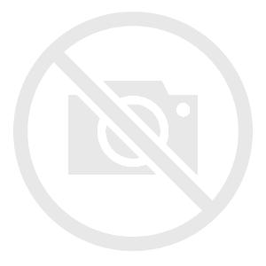 Urszula Religa Parfianowicz, Holenderka o poranku, w srebrnej, włoskiej oprawie, 2021