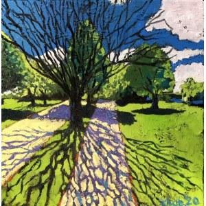 David Schab, Drzewo bez liści