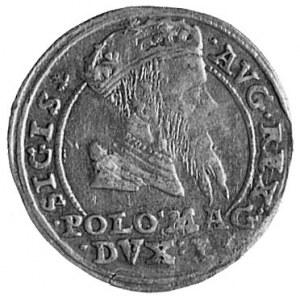 grosz litewski na stopę polską 1567, Tykocin, j.w., Kop...