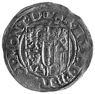 grosz 1613, Drezdenko, Aw: Jabłko z krzyżem, po bokach ...