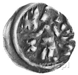 margrabiowie askańscy, denar, Aw: Margrabia, dwa hełmy ...
