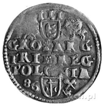 trojak 1586, Poznań, j.w., Kop.X1.3a -R-, Gum.718