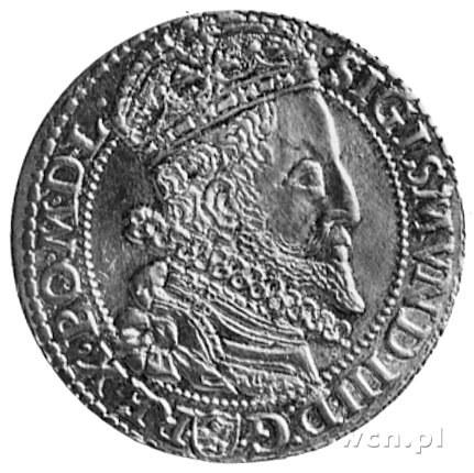 szóstak 1599, Malbork, Aw: Popiersie z dużą głową i nap...