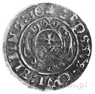 grosz 1630, Elbląg- Okupacja szwedzka, Aw: Popiersie Gu...
