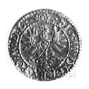 zestaw szelągów 1596 (Wschowa), 1599 (Bydgoszcz) i *162...