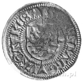 szeląg 1489, Gardziec, Aw: Gryf i tytulatura Bogusława ...