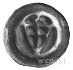 brakteat: Tarcza krzyżacka, powyżej krzyżyk, Vos.27