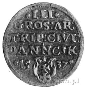 trojak 1537, Gdańsk, j.w., Gum.570, Kurp.506 Rl