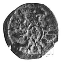 denar 1613, Poznań, Aw: Orzeł, Rw: Herb Poznania, Gum. ...