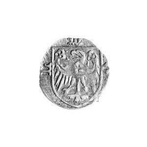 halerz (1430 r.), Aw: Orzeł św. Jana i napis: M-O-L, Rw...