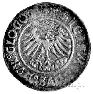 grosz 1506, Głogów, Kurp. 4 R2, Gum. 474, ciemna patyna...