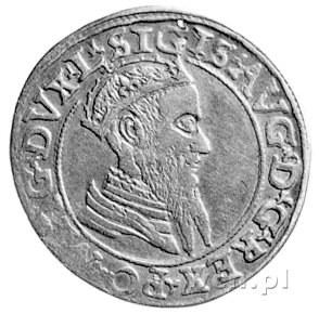 czworak 1566, Wilno, Kurp. 856 R, Gum. 624.