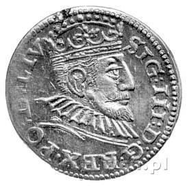 trojak 1594, Ryga, końcówka napisu LIV, Kurp. 2510 R3, ...