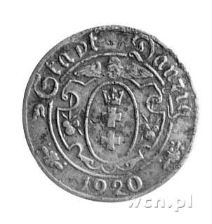 10 fenigów 1920, Gdańsk, duża cyfra 10, drugi egzemplar...