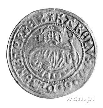 grosz 1519, Złoty Stok, Fbg. 425, rzadki.