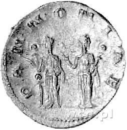 antoninian, Aw: Popiersie w koronie radialnej w prawo i...