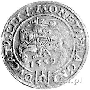 grosz na stopę litewską 1559, Wilno, Kurp. 794 R3, Gum....