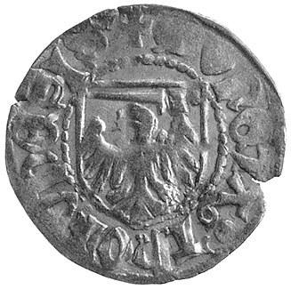 szeląg, Toruń, Aw: Krzyż dwuramienny i napis KAZIMIR GR...
