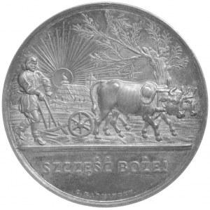 Towarzystwo Gospodarcze- medal autorstwa C. Radnitzky'e...