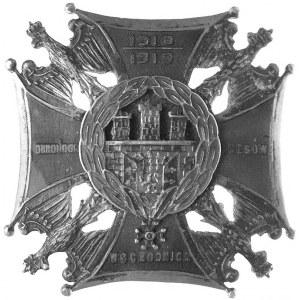 oficerska odznaka Obrońcom Kresów Wschodnich 1918 / 191...