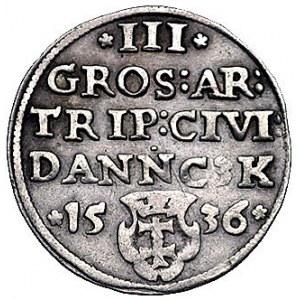 trojak 1536, Gdańsk, odmiana z napisami PRVSS / DANNC3K...