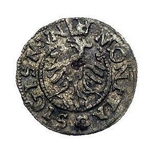 trzeciak 1546, Kraków, Kurp 20 R5, Gum. 478 RR, T. 30, ...