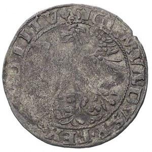 grosz 1535, Wilno, odmiana z literą N pod Pogonią, T. 7...