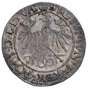 grosz 1536, Wilno, odmiana z literą I pod Pogonią, Ivan...