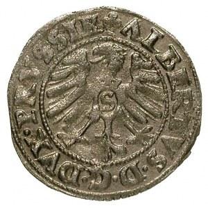szeląg 1553, Krolewiec, omyłkowa odmiana napisu SOLDVS,...