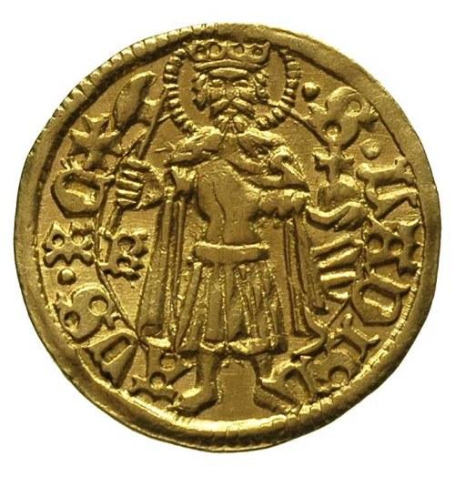 Maciej Korwin 1458-1490, goldgulden, Krzemnica, Aw: Tar...