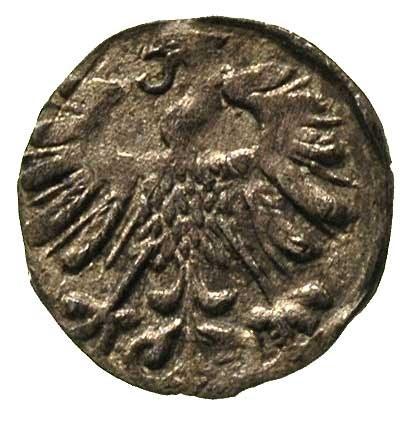 denar 1558, Wilno, Ivanauskas 442:63, T. 4