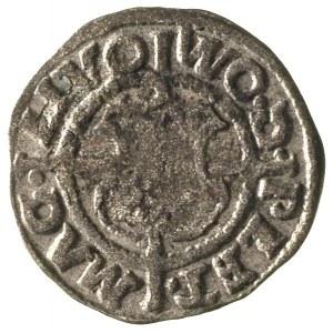 Walter von Plettenberg 1494-1525, szeląg 1535, Ryga, Aw...