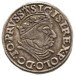 trojak 1538, Gdańsk, delikatna patyna, ładnie zachowany