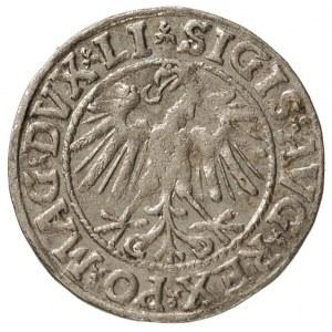 półgrosz 1546, Wilno, na awersie Orzeł nowego typu, na ...