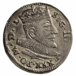 trojak 1591, Wilno, cyfry daty szeroko rozstawione, Ige...