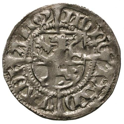 szeląg 1492, Dąbie, Dannenberg 380