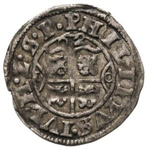 podwójny szeląg 1620, Nowopole (Franzburg), Hildisch 21...