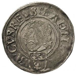 grosz 1509, Nysa, data nad tarczą herbową, Fbg. 448 (77...