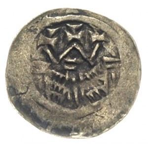 Władysław Herman 1081-1102, denar, Aw: Głowa księcia w ...