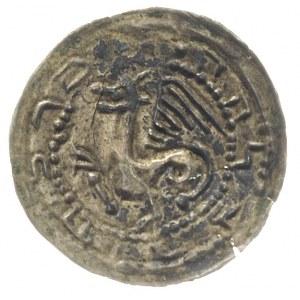 Mieszko III 1173-1202 lub synowie, brakteat, Gryf zwróc...