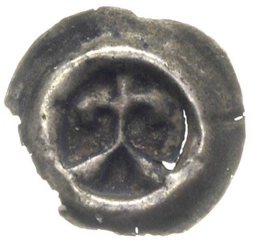 Świętopełk II Wielki 1219-1266, brakteat, Lilia na krok...