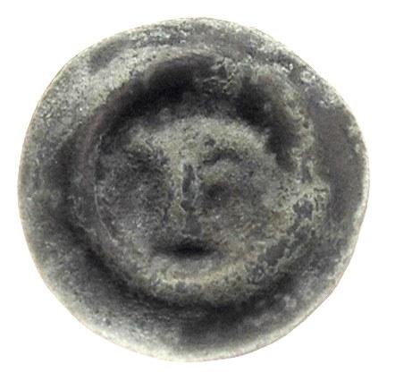 Szczecin, brakteat po 1260, Głowa gryfa w prawo, 0.17 g...