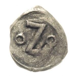 Koszalin- miasto /Köslin/, denar XV w, Aw: Głowa św. Ja...