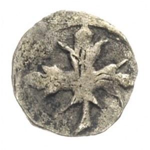 Gardziec- miasto /Gartz/, denar XV w ?, Aw: Liść klonow...