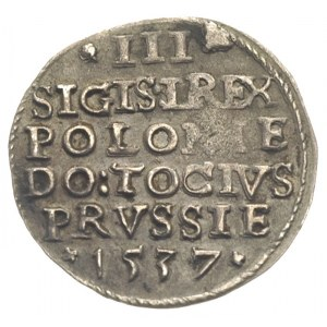 trojak 1537, Elbląg, Iger E.37.1.b, (R3), patyna, rzadk...