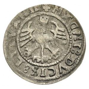 półgrosz 1528, Wilno, Ivanauskas 1S348-10, T. 25, rzadk...