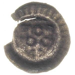 brakteat ok. 1240-1280, Głowa wołowa na wprost w tarczy...
