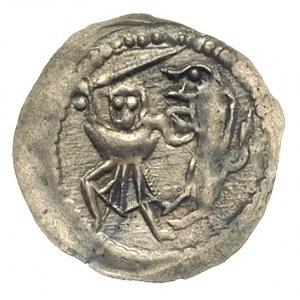 denar jednostronny ok. 1173-1190;  Rycerz walczący z lw...
