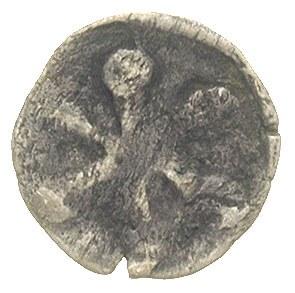 denar XIV w., Aw: Rozeta z sześcioma długimi ramionami,...