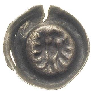 brakteat ok. 1467-1490, Orzeł, 0.20 g, BRP Prusy T20.4